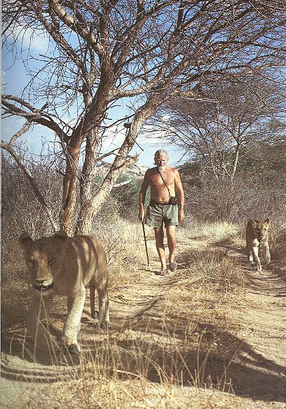 GeorgeAdamson_2Lions_Walking_600_Cr.jpg (134550 bytes)