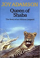 QueenOfShaba_BookCover_Medium.jpg (12406 bytes)